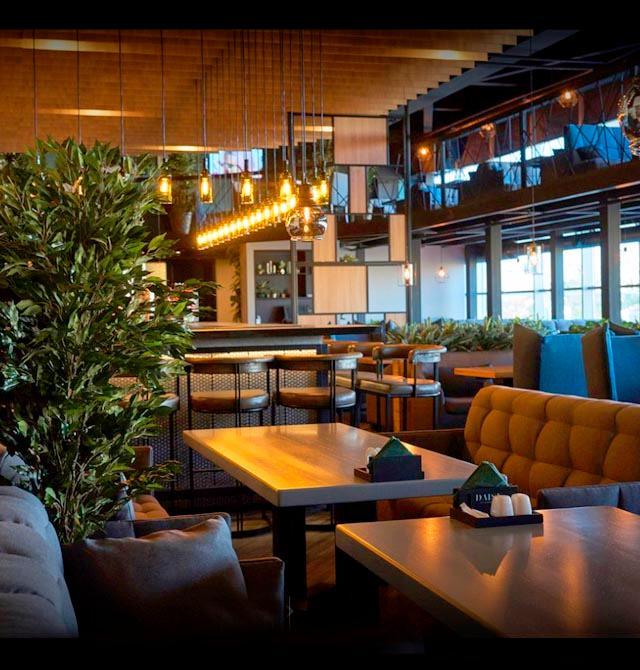 «DAISY» ресторан-бар